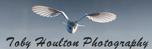 Toby Houlton Photography original website